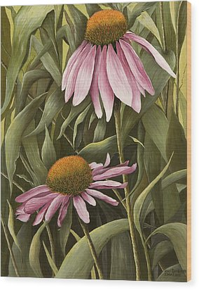 Pink Echinaceas Wood Print by Mary Ann King