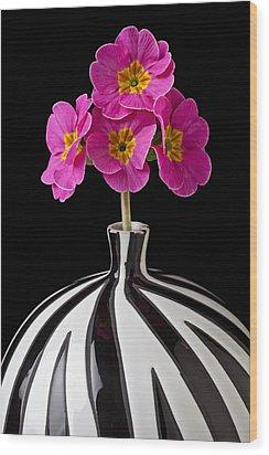 Pink English Primrose Wood Print by Garry Gay