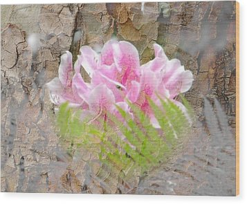 Pink Flower Bark Wood Print