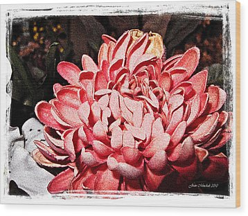 Wood Print featuring the photograph Pink Flower by Joan  Minchak