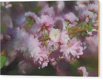 Wood Print featuring the photograph Pink Flowering Almond by Donna Kennedy