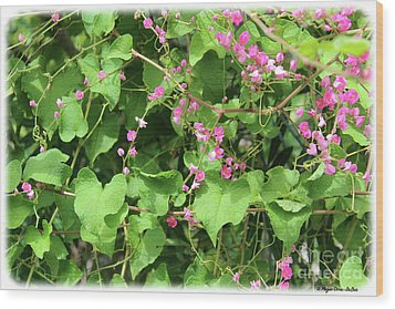 Wood Print featuring the photograph Pink Flowering Vine1 by Megan Dirsa-DuBois