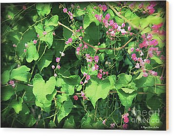 Wood Print featuring the photograph Pink Flowering Vine2 by Megan Dirsa-DuBois