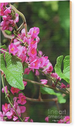 Wood Print featuring the photograph Pink Flowering Vine3 by Megan Dirsa-DuBois