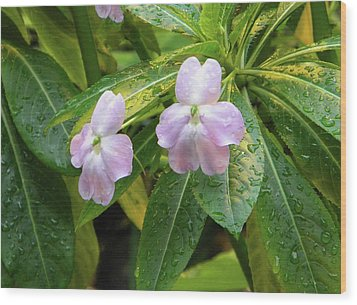 Wood Print featuring the photograph Pink Flowers Under The Rain by Manuela Constantin
