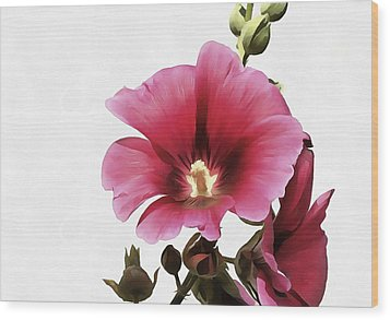 Pink Hollyhock Wood Print by Tracey Harrington-Simpson
