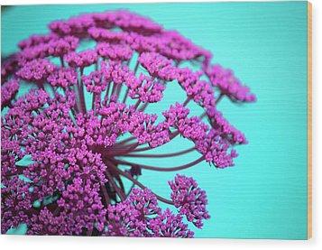 Pink Lace 02 Wood Print by Bobby Villapando