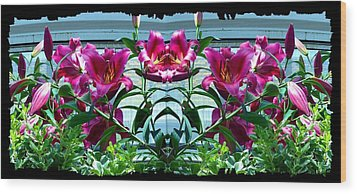 Pink Lilies Fusion Wood Print by Will Borden