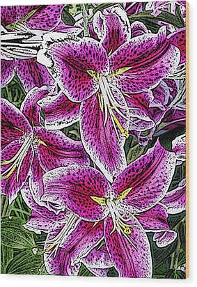 Pink Lillies Wood Print by Ann Tracy