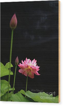 Wood Print featuring the photograph Pink Lotus In Black by Dodie Ulery