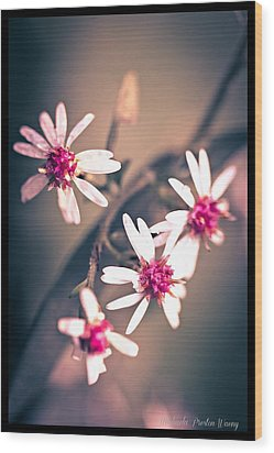 Wood Print featuring the photograph Pink by Michaela Preston