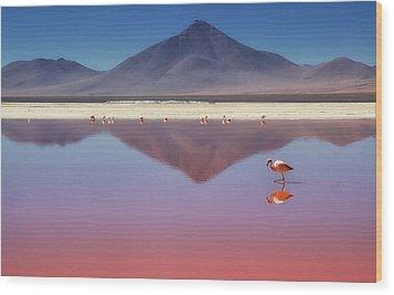 Pink Morning Wood Print by Margarita Chernilova