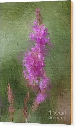 Pink Nature Abstract Wood Print by David Lane