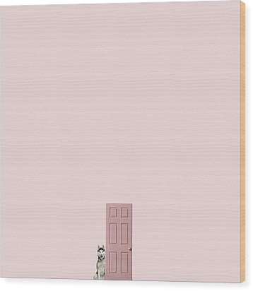 Pink On The Pink Wood Print by Caterina Theoharidou