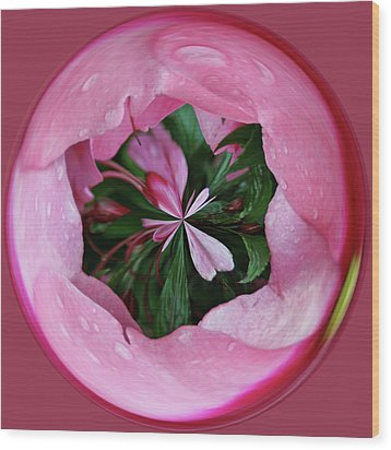 Pink Orb Wood Print by Bill Barber