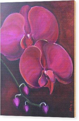 Pink Orchid Wood Print by Silvia Philippsohn