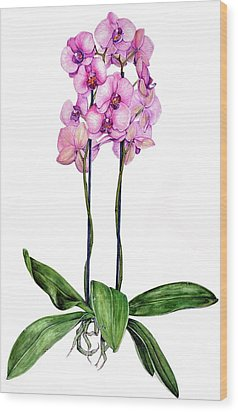 Wood Print featuring the painting Pink Orchids by Heidi Kriel