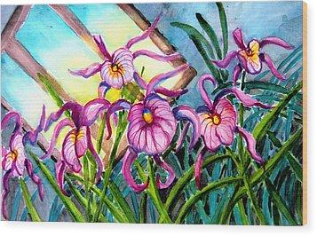 Pink Orchids Under Skylight Wood Print by Helen Kern