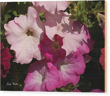 Pink Pastels Wood Print by Judy  Waller