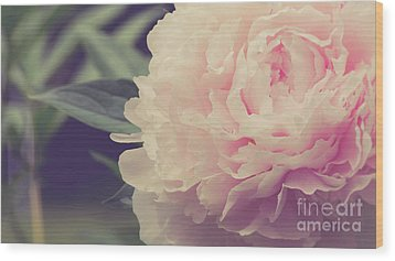 Wood Print featuring the photograph Pink Peony Vintage Style by Edward Fielding