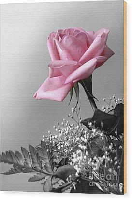 Pink Petals Wood Print by Carlos Caetano