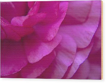 Pink Petals Wood Print by M Valeriano