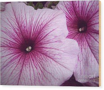 Pink Petunias Wood Print