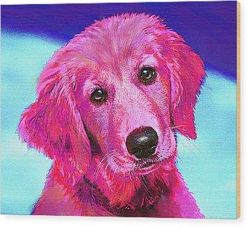 Pink Retriever Wood Print by Jane Schnetlage