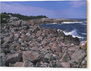 Pink Rock Shoreline Wood Print by Sally Weigand