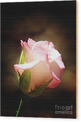 Pink Rose 2 Wood Print