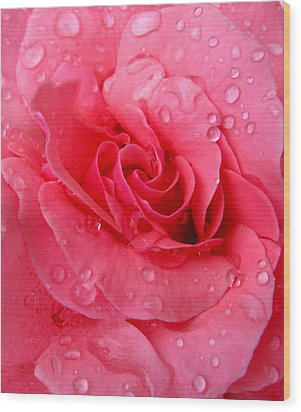 Wood Print featuring the photograph Pink Rose by Patricia Januszkiewicz