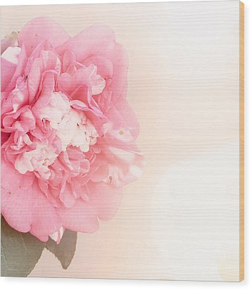 Wood Print featuring the photograph Pink Ruffled Camellia by Cindy Garber Iverson