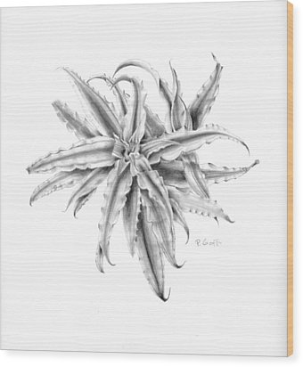 Pink Star In Gray Wood Print by Penrith Goff