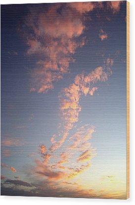 Pink Sunset One Wood Print by Ana Villaronga