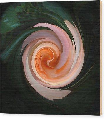 Pink Swirl Wood Print by Barbara Oberholtzer
