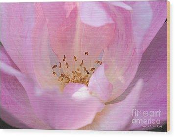 Pink Swirls Wood Print