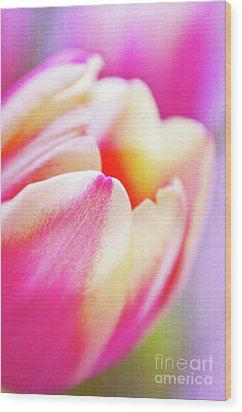 Pink Tenderness Wood Print by Angela Doelling AD DESIGN Photo and PhotoArt