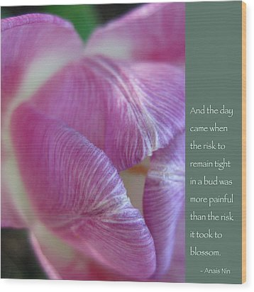 Pink Tulip With Anais Nin Quote Wood Print
