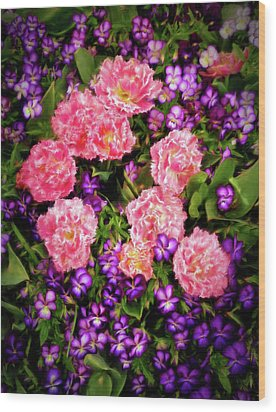 Pink Tulips With Purple Flowers Wood Print by James Steele