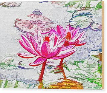 Pink Water Lily Flowers Blooming On Pond Wood Print by Lanjee Chee