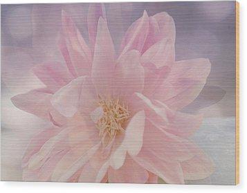 Pink Whisper Wood Print by Bonnie Bruno