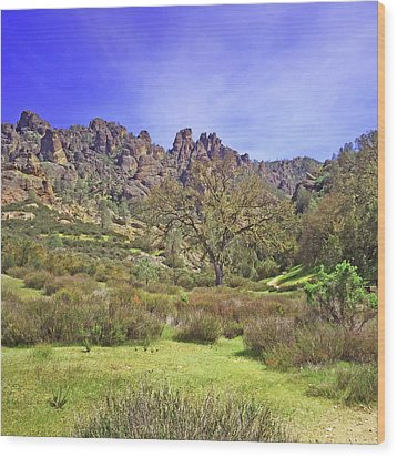 Wood Print featuring the photograph Pinnacles National Park Watercolor by Art Block Collections