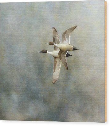 Wood Print featuring the photograph Pintail Duo by Angie Vogel