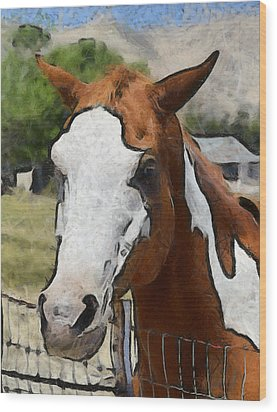 Wood Print featuring the photograph Pinto In The Pasture Portrait  by Barbara Snyder