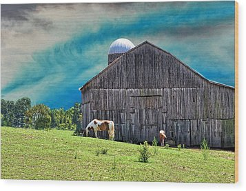 Pinto Summer Wood Print by Jan Amiss Photography