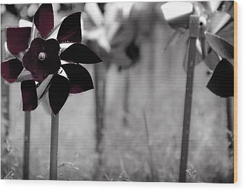 Pinwheels Wood Print by Mamie Thornbrue