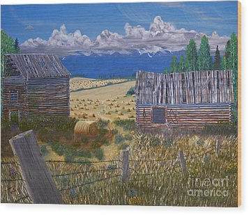 Pioneer Homestead Wood Print by Stanza Widen