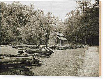 Pioneers Cabin Wood Print by Scott Pellegrin