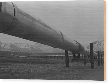 Pipeline Near Atigun Pass Brooks Wood Print by Everett