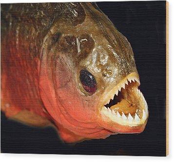 Piranha Wood Print by Larry Linton